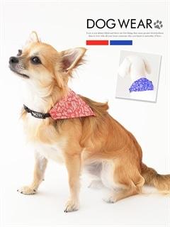 [犬用品]ペイズリー柄三角バンダナ付き首輪