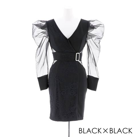 [SMLサイズ]長袖シアータイトミニドレス[3サイズ展開](ブラック×ブラック-Sサイズ)