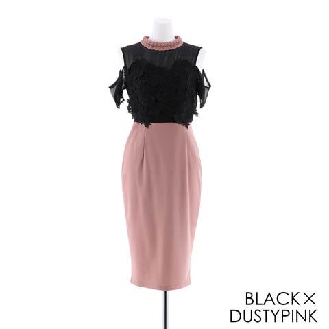 [SMLサイズ]シアーダークローズ刺繍膝丈ドレス[3サイズ展開](ブラックXダスティーピンク-Sサイズ)