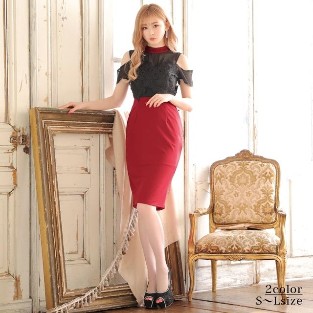 [SMLサイズ]シアーダークローズ刺繍膝丈ドレス[3サイズ展開]