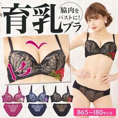 【bon】エレガントROSEモチーフ刺繍x脇高ブラジャー&フルバックショーツ